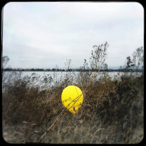 Oakland Balloon 2018